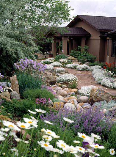 Xeriscaped Colorado Yard