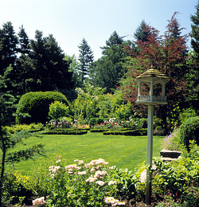 Lawn with Decorative Bird Feeder