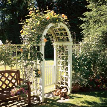 Arch-top Arbor and Gate