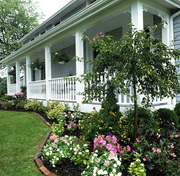 Tree Surrounded by Blooming Plants in Front of White Porch