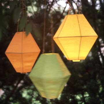 paper lanterns hanging from branch