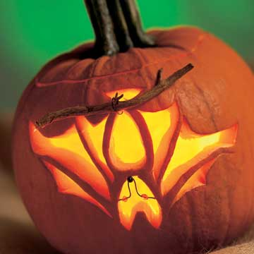 carved bat pumpkin