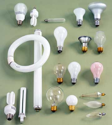 variety of lightbulbs