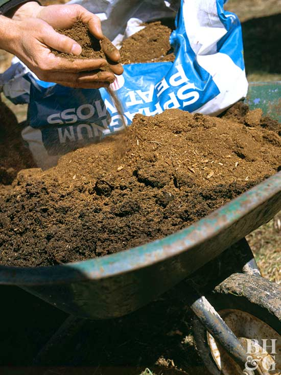 mixing sphagnum peat moss with soil