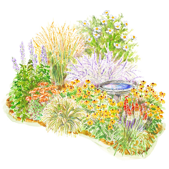 A Simple Late Summer Perennial Garden Plan Better Homes