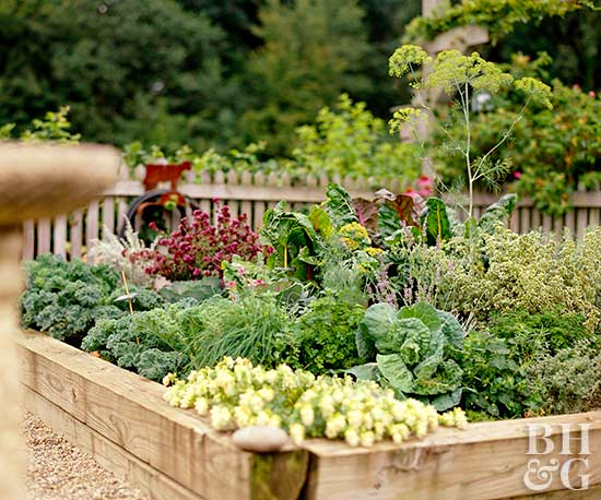 Gardening Apps Better Homes Amp Gardens