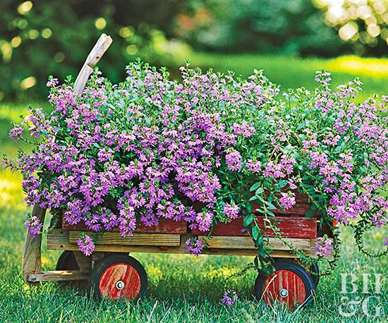 wagon with purple flowers