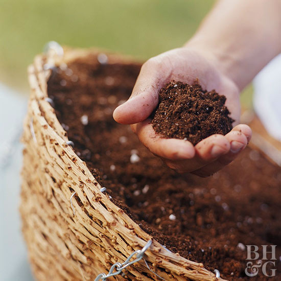 adding soil to hanging basket