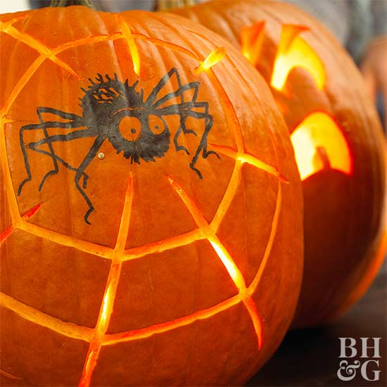 spider web carving in pumpkin and black spider painted on