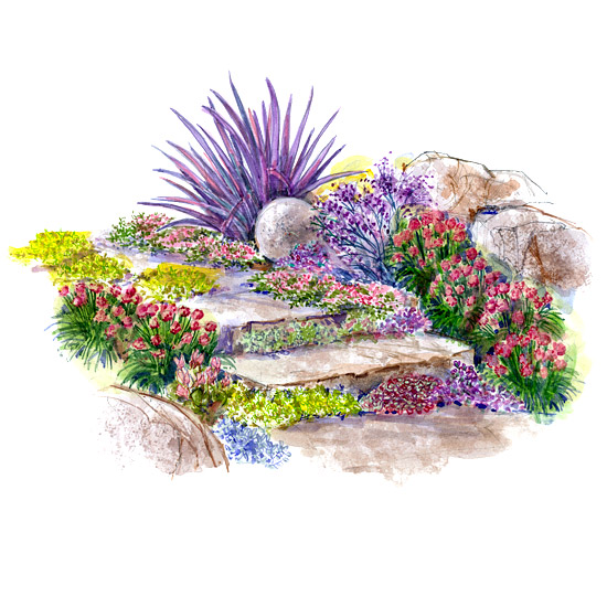 Drought Tolerant Slope Garden Plan Better Homes Amp Gardens