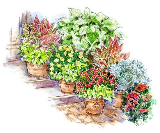 No-Fail Container Garden Plan