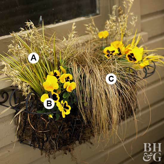 Window Box with numbers