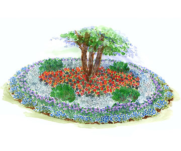Bold Shade Garden Illustration