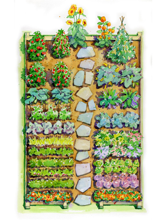 Easy Children's Vegetable Garden Plan | Better Homes & Gardens