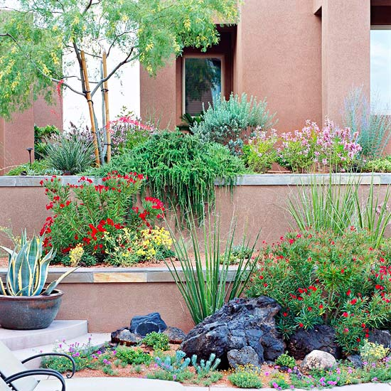 Desert Garden Ideas: Easy-Care Desert Landscaping Ideas