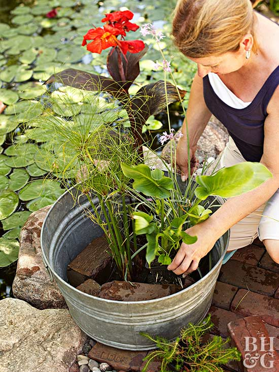 woman placing plants in metal container water garden