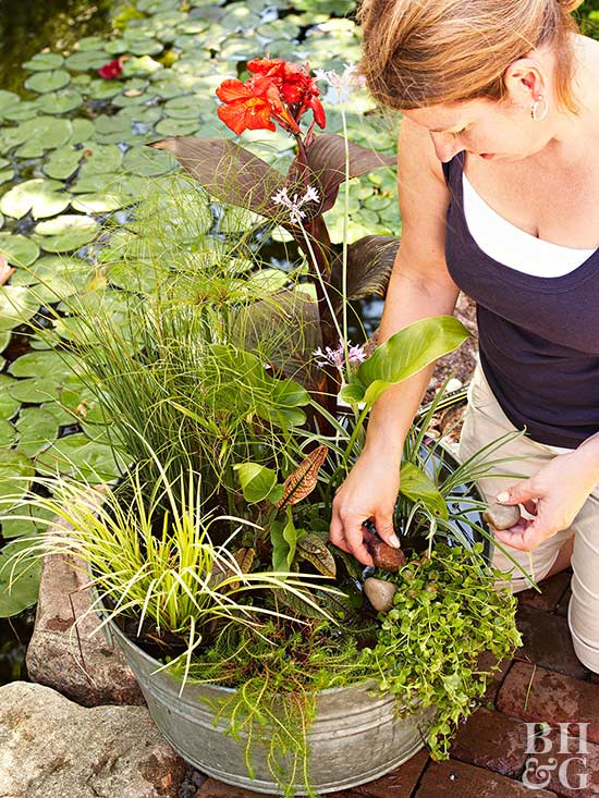 woman placing rocks into water container garden