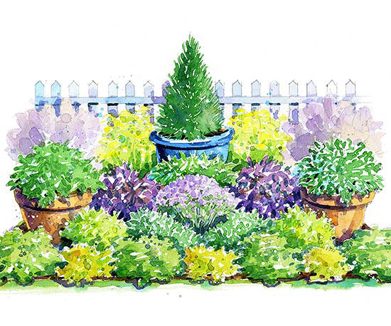 Colorful Herb Garden