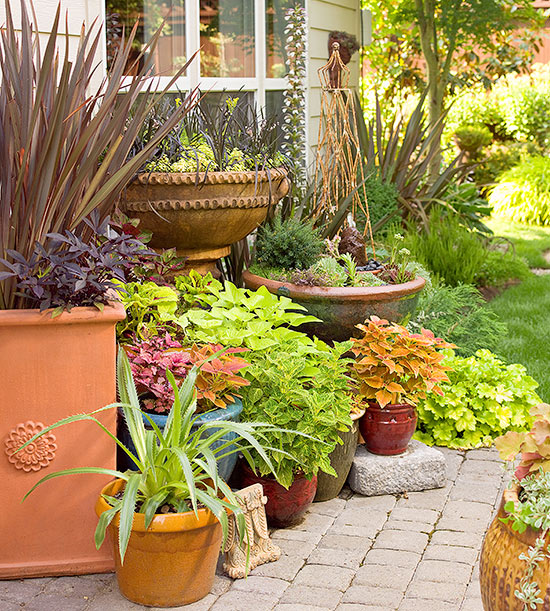 How To Group Container Gardens Together Better Homes Gardens