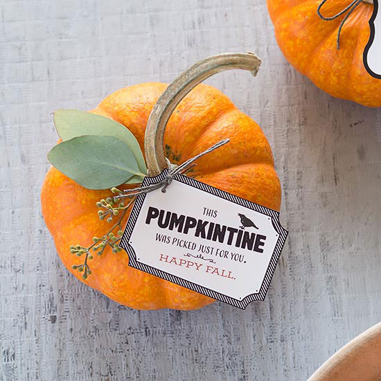Pumpkintine Pumpkin Craft