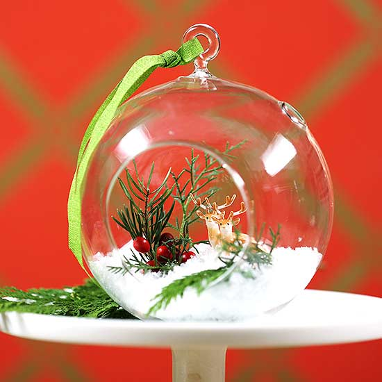 Make a Globe Terrarium