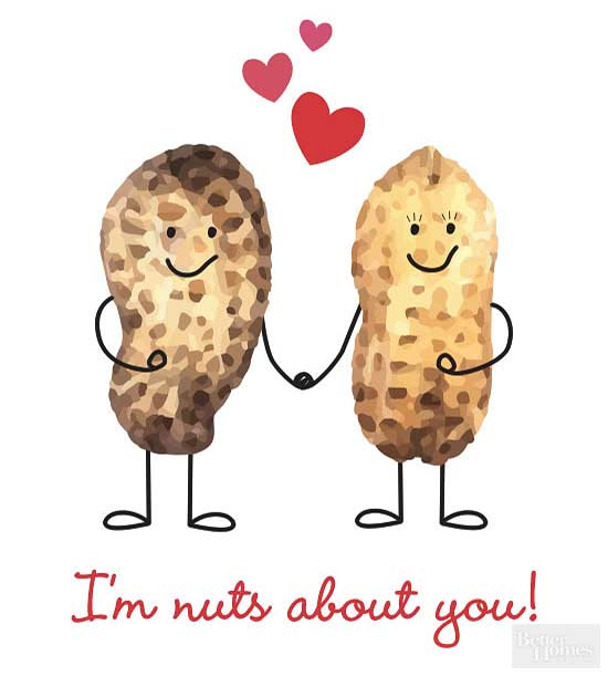 Im Nuts About You Valentine
