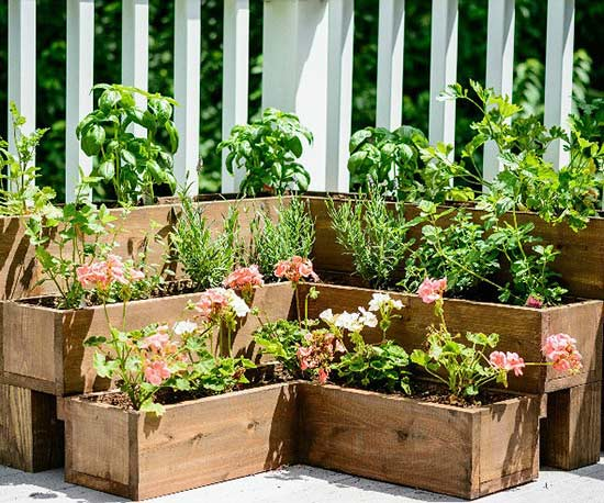 Tiered Outdoor Herb Garden- one time use only blogger image