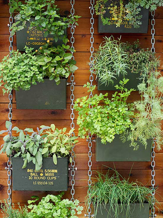 Upcycled Metal Ammunition Box Herb Garden