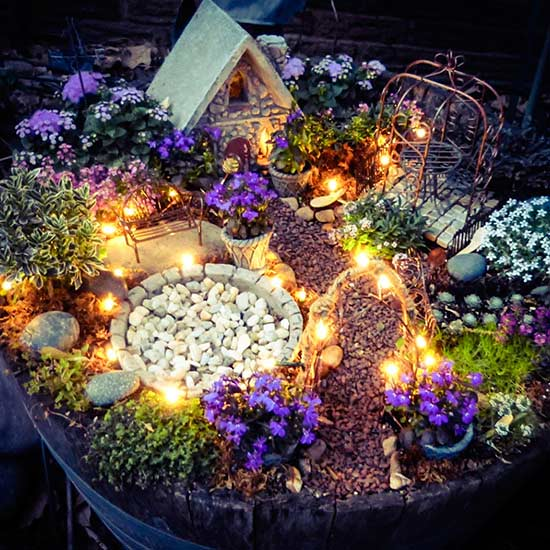 2 fairy lights garden