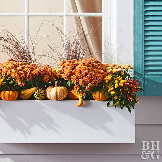 orange fall window box with orange mums and mini pumpkins and gourds