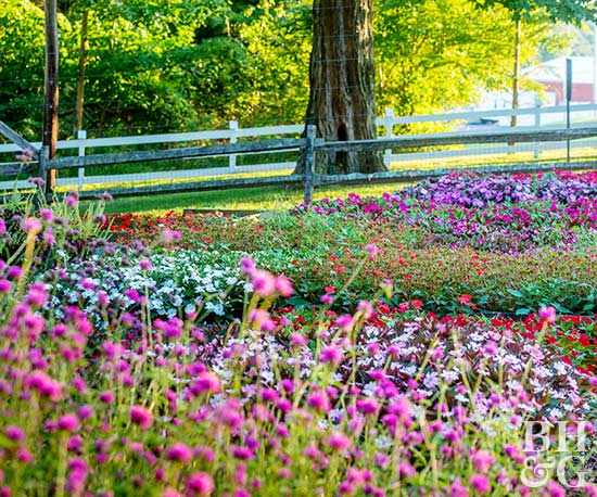 Sustainable Gardening with purple and pink flower beds