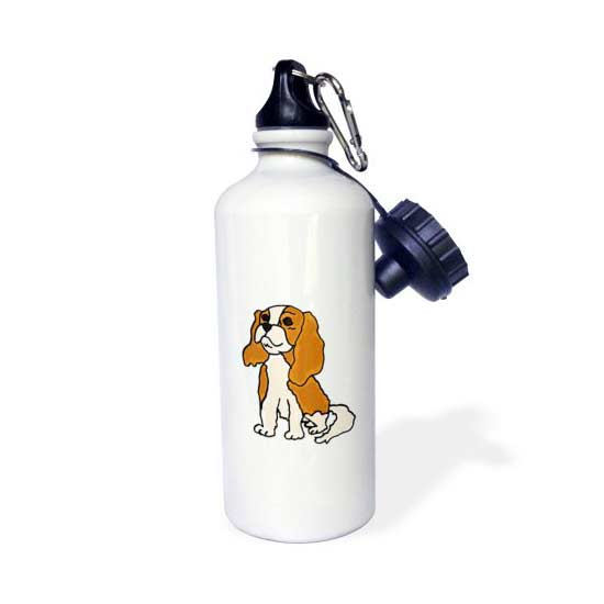 Walmart Spaniel Water bottle