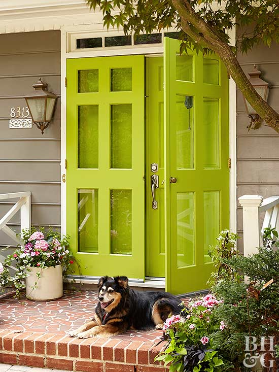 Green Storm Door and dog