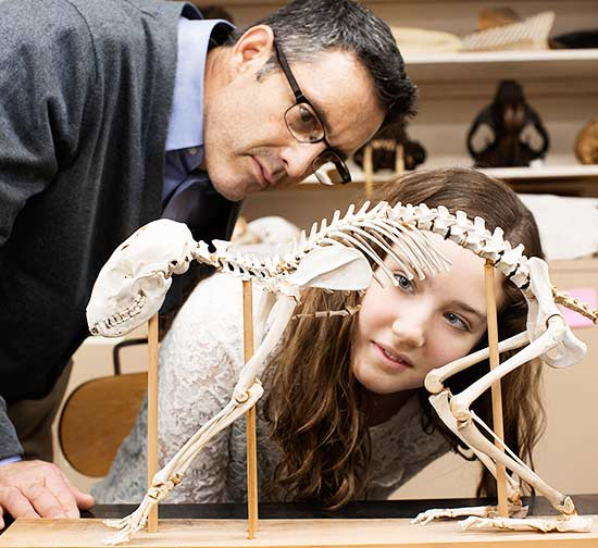 father and daughter looking at animal skeleton
