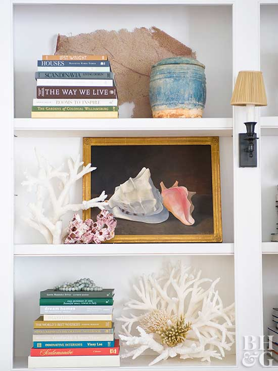 Seashell Shelf, shelf, books