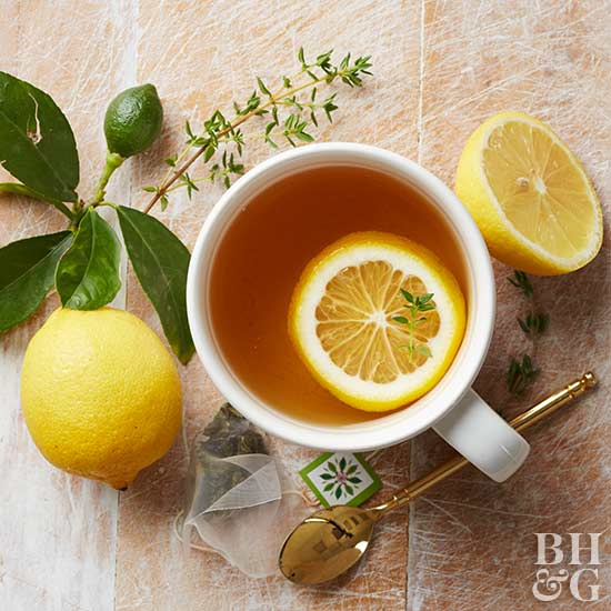 Tea Garden, tea with lemon, tea, lemon, cup of tea