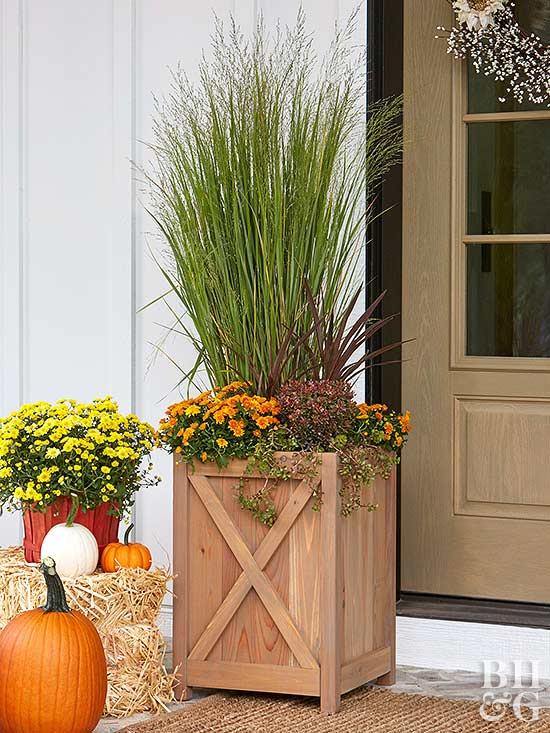 wooden planter by front door with grasses and mums