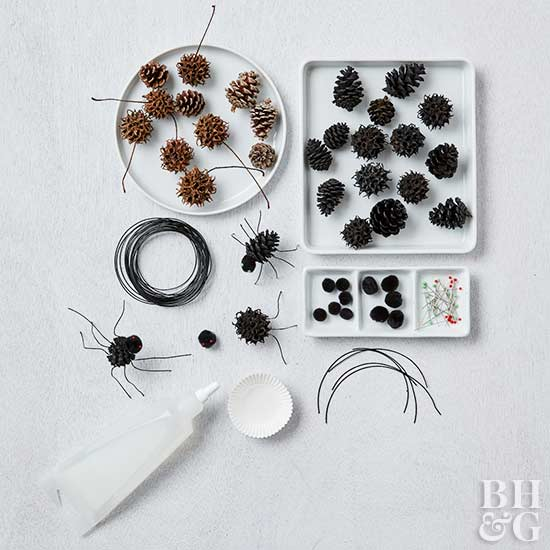 bugs, pinecones, DIY, Halloween