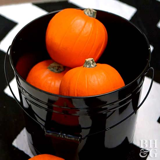 small pumpkins in black bucket