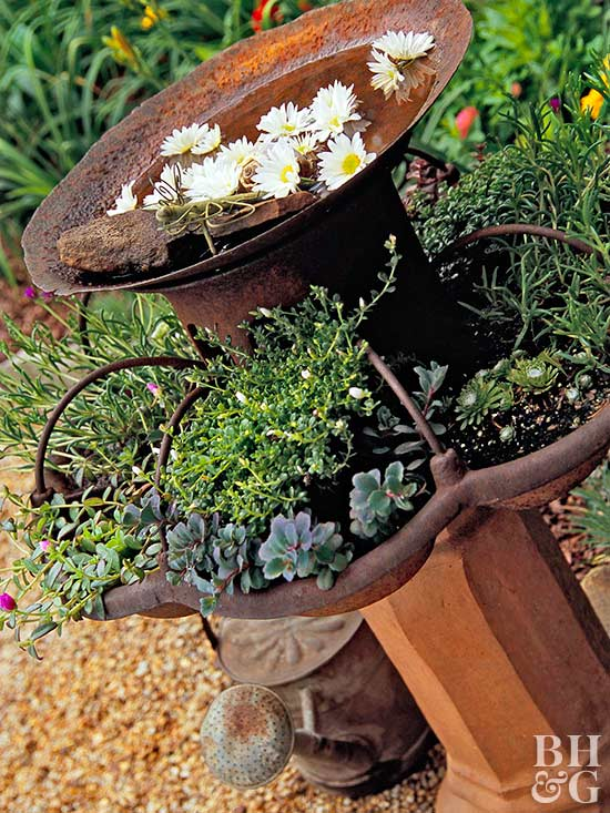 two-tiered bird bath with plantings