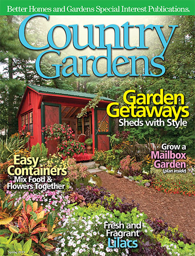 Subscribe to american patchwork quilting magazine for Bhg shopping