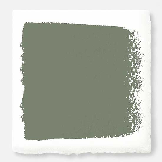 olive grove earthy paint color
