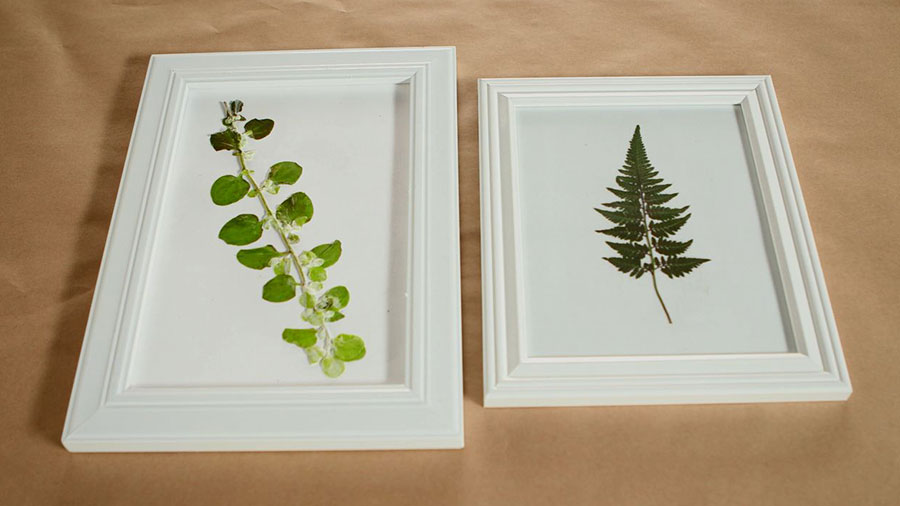 Make Botanical Art With On-Hand Supplies