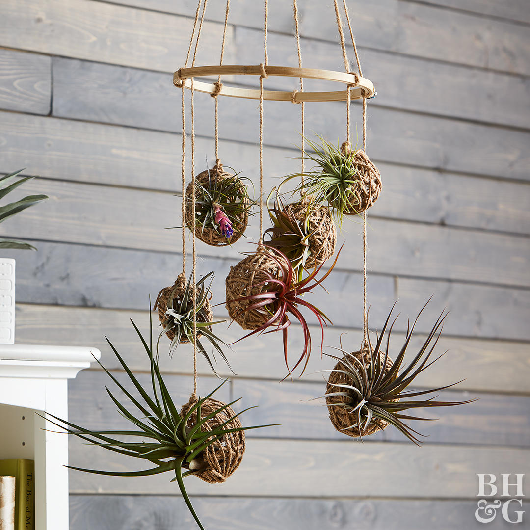 mobile with seven hanging air plants